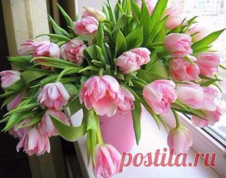Всем Доброе утро!Пусть каждая минута жизни будет яркой, насыщенной, необыкновенной.   #oriflame #доброе_утро #вдохновение_цветом #позитив