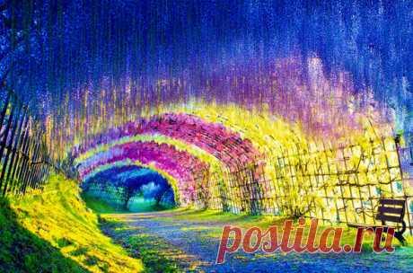 Тоннель глициний в японском саду цветов Кавати Фудзи.