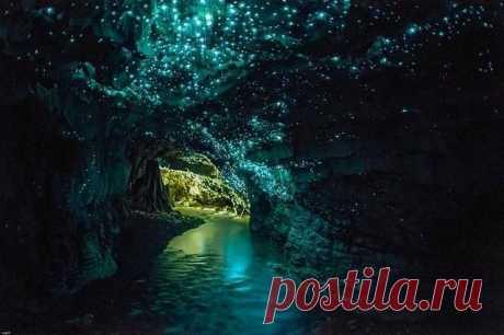 """Грот в пещерах Вайтомо - """"домик"""" для маленьких светящихся существ."""