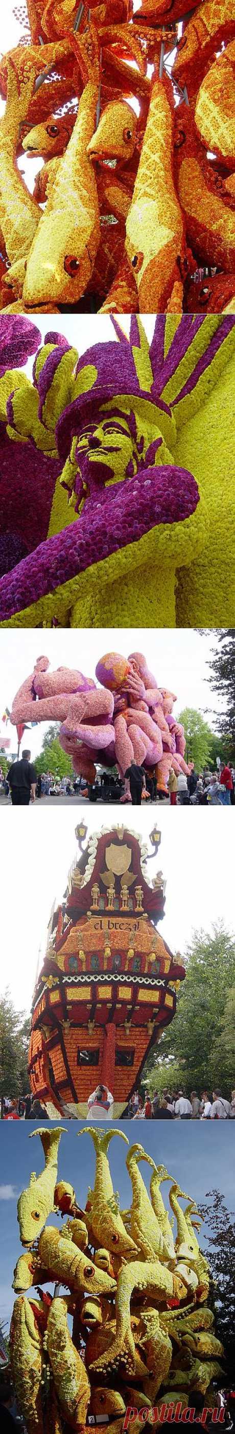 Парад цветов в Аалсмеере (Голландия) - 7 сентября.
