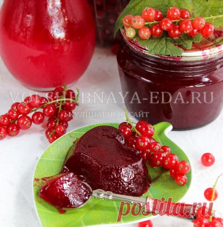 Желе из красной смородины на зиму: простой рецепт | Волшебная Eда.ру