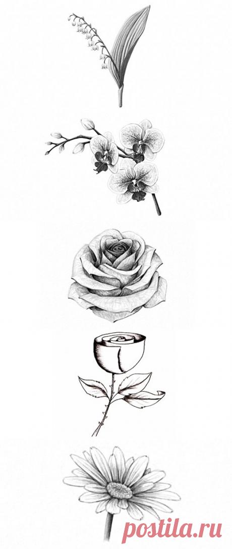 Как Нарисовать Цветы | web-paint.ru
