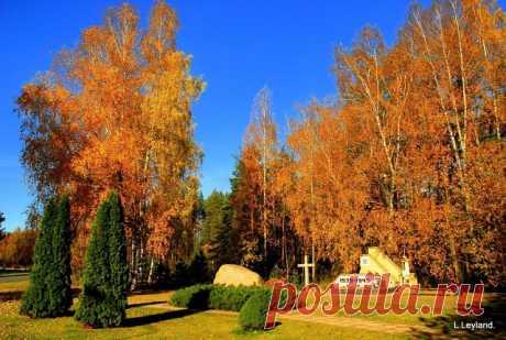 Красивая осень в Висагинасе.