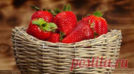 5 шагов до небывалого урожая клубники   Как правильно выращивать клубнику, чтобы собрать богатый урожай красивых, сочных и сладких ягод? Все ответы – в нашей статье. Клубника (или садовая земляника) на вашем участке будет расти на зависть…