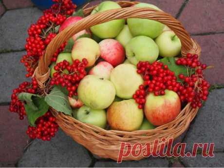 Осенние композиции с яблоками: 18 идей для вашего вдохновения