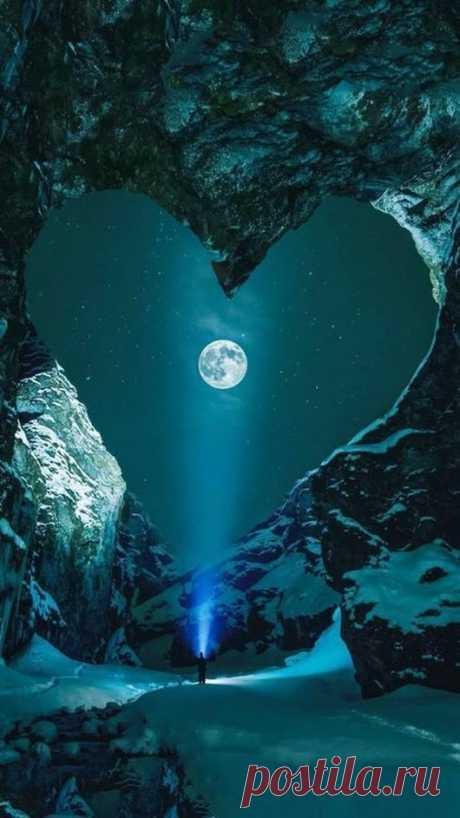 """beautyfulthingsworld: """"Moonlight 🌹 ♚ 🌹 """""""