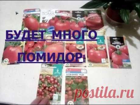А ВОТ ЭТИ 22 СОРТА ПОМИДОР Я, ПОЖАЛУЙ, ПОСАЖУ! Самые урожайные сорта томатов/ Обзор сортов на 2020
