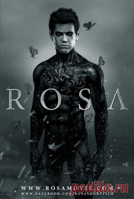 Шикарный визуал в анимации Rosa