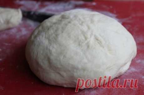 Дрожжевое тесто на кислом молоке : Рецепты теста