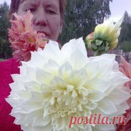 Александра Лукоянова