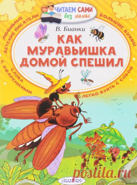 Виталий Бианки / Как муравьишка домой спешил » Сказки онлайн для детей слушать или читать.