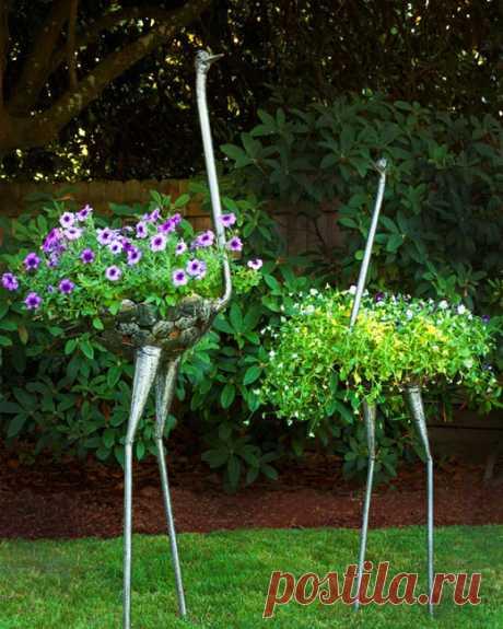Красивые клумбы – цветочные страусы | Блог о строительстве и ремонте Domstoy.ru