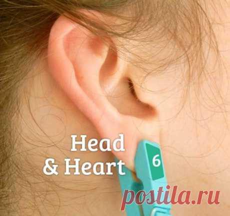 Clothespeg on an ear.