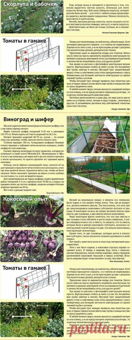 Советы садоводам-огородникам.Проверены практикой..