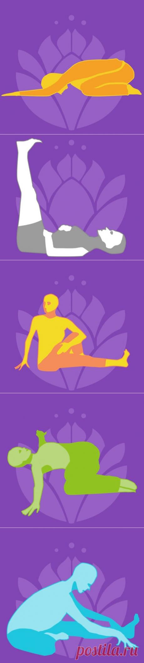 Как избавиться от боли в спине — Всегда в форме!
