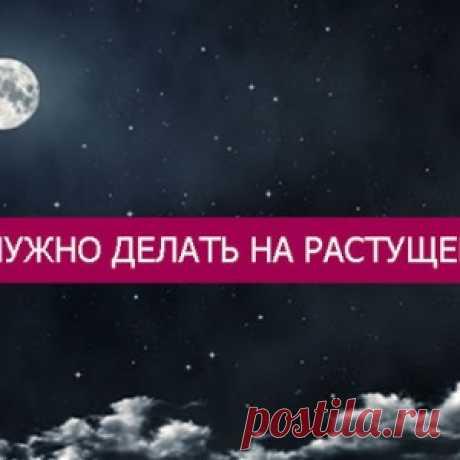 Что нужно делать на растущей луне