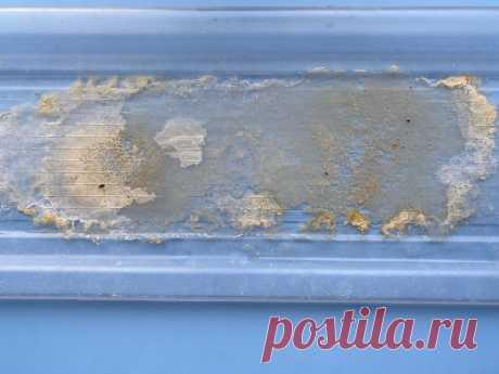 Гениальное просто: показываю, как отмыть от известкового налета поддон для сушки посуды | Мария Нефедова | Яндекс Дзен