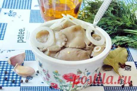 Соленые вешенки Вешенки - замечательные грибы, которые можно встретить не только в лесу, но и вырастить в домашних или промышленных условиях. Соленые и маринованные они напоминают грузди.
