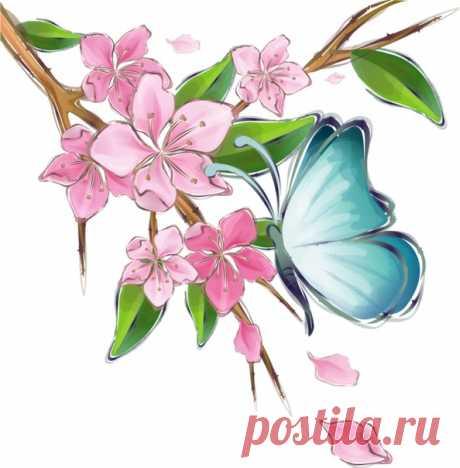 Бабочки — самые эфемерные и самые прекрасные существа на Земле. Откуда-то появляются, тихонько проживают свои крохотные жизни, не требуя почти ничего, а потом исчезают, наверное, в какой-то другой мир... Совсем не такой, как наш.  Харуки Мураками