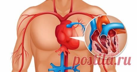Вот как очистить артерии сердца с помощью природных средств: 2 рецепта
