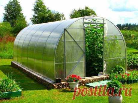 Советы по выращиванию овощей в теплице - апрель-май