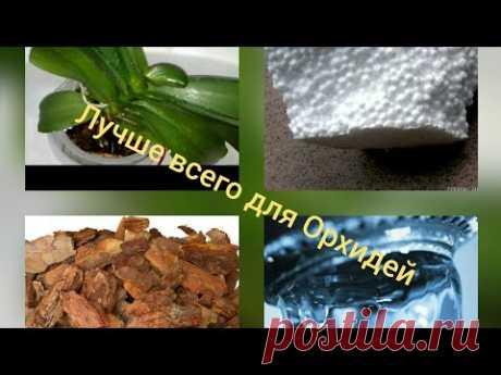 Самый лучший метод посадки Орхидей  смываем соли, уменьшаем количество насекомых, контролируем полив