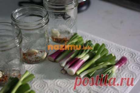 Маринованный зеленый лук - рецепт с фото, как мариновать на зиму
