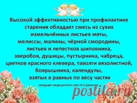 (2) Т.А. Колесникова - Челябинск, Челябинская обл., Россия, 54 года на Мой Мир@Mail.ru