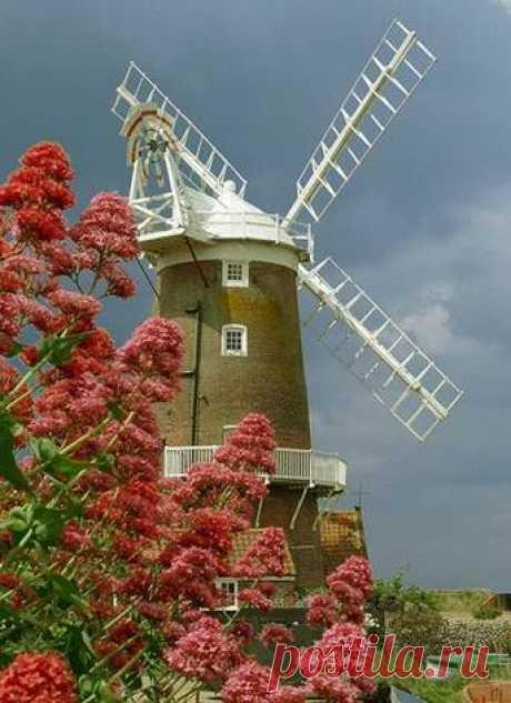 Человеку, который почувствовал ветер перемен, лучше строить не щит от ветра, а ветряную мельницу.