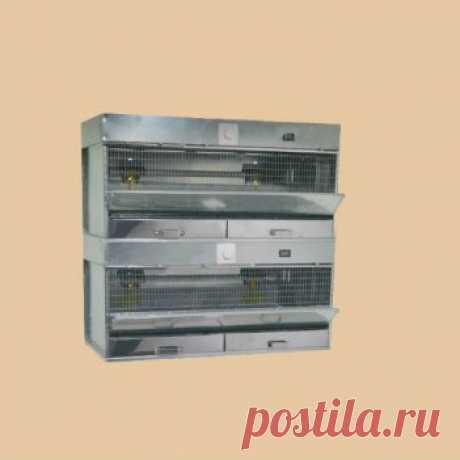 Купить брудер для цыплят в Москве в интернет магазине Клетки-Маркет цена, фото, размеры