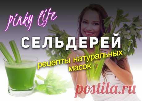 Сельдерей — овощ, который в Древней Греции приравнивали к божественному растению, называли «Лунным растением» и никогда не употребляли в пищу.