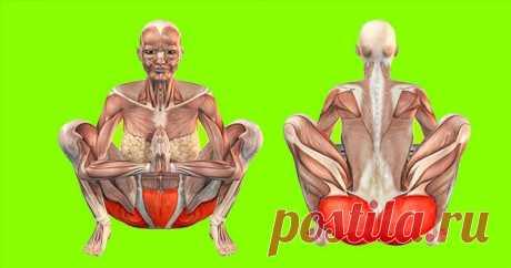 Техника «маласана»: делайте упражнение каждый день, и ваше тело преобразится Есть такая древняя техника под названием «маласана». Техника «маласана»: делайте упражнение каждый день, и ваше тело преобразится Если выделять на такое упражнение всего несколько минут в день, ваше...