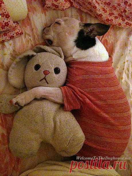Slumber party. | Flickr - Photo Sharing!
