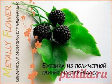 Ежевика: ягоды из полимерной глины