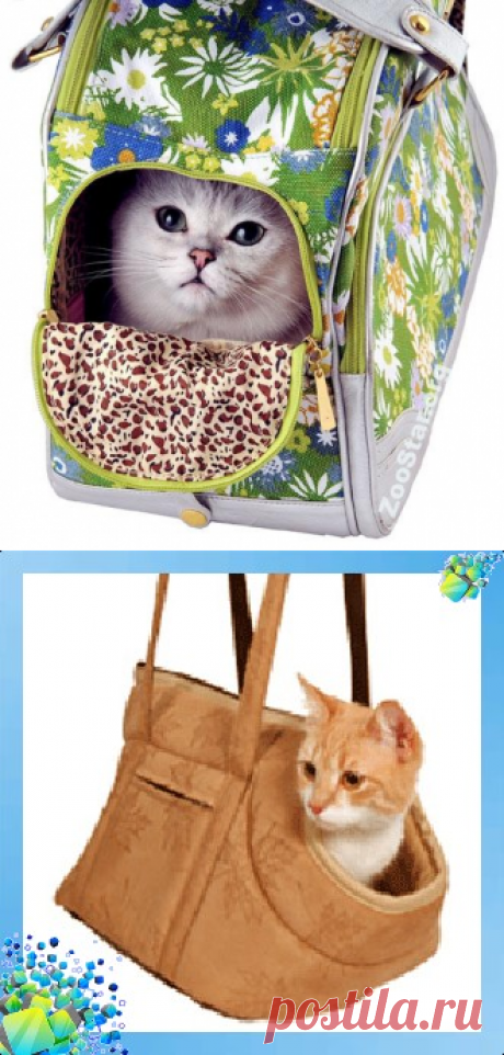 Сумка переноска для кошек своими руками: выкройка и пошаговый пошив сумки переноски для кошки