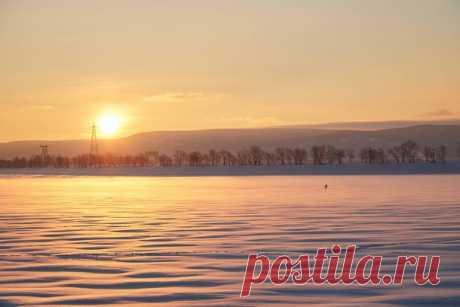 В лучах золотистого рассвета! Фотография Михаила Линдерова – nat-geo.ru/community/user/221424