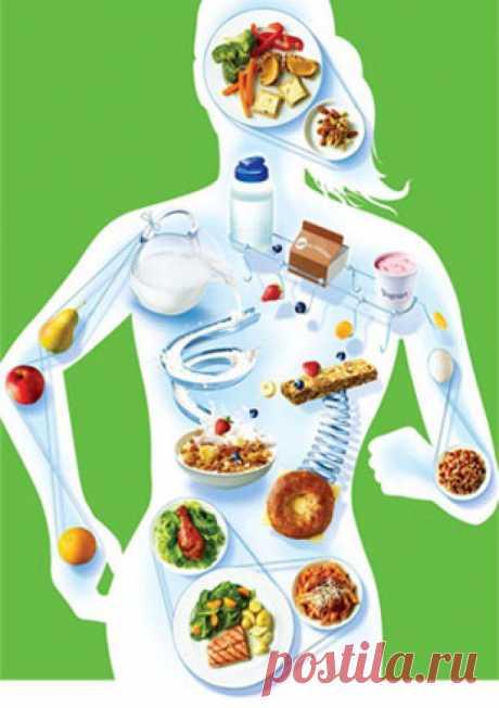 10правил здорового питания