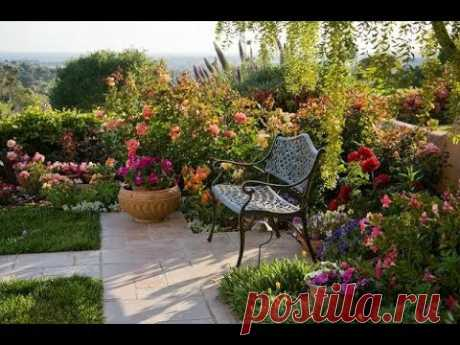The most beautiful plants which should be planted in a garden and at the dacha - YouTube