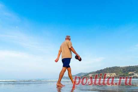 Бесплатная путевка в санаторий для пенсионеров: кому положена и как оформить Для пенсионера бесплатным будет не только сам отдых, но еще и проезд к месту, где располагается пансионат.