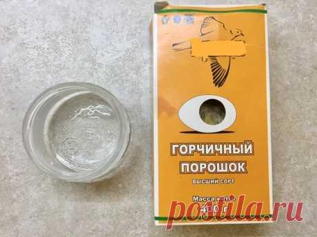 Рецепт домашней горчицы «До слёз»   СамоДел   Яндекс Дзен