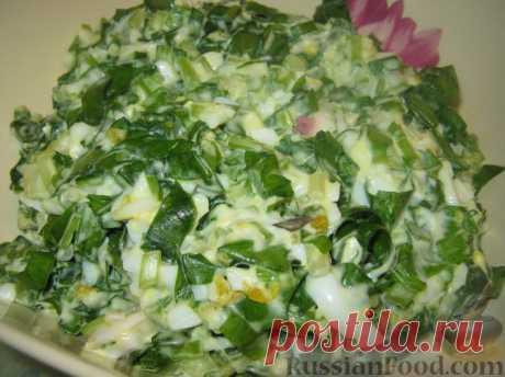 Черемша - суперполезная весенняя зелень! Только лучшие рецепты!