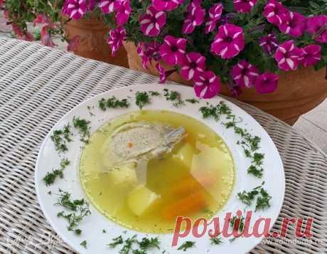 Деревенский суп. Ингредиенты: мясной бульон, морковь, лук зеленый