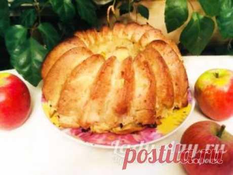 Ленивая шарлотка с яблоками, рецепт с фото пошагово в духовке | Простые рецепты с фото