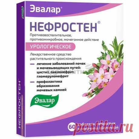 Нефростен таблетки п.п.о. 60 шт. — сравнить цены и купить в интернет-аптеке ЗдравСити