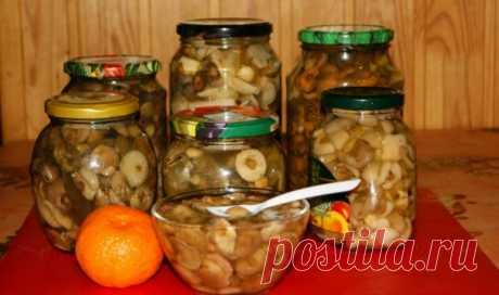 Маринованные маслята на зиму: простые и самые вкусные рецепты Доброго дня! Ух, ты вот это да! Сколько сегодня я видела грибов на базаре, и каких там только нет. И