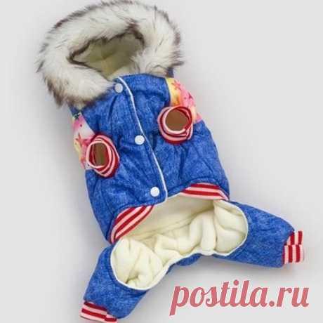Горячая собака одежда пальто теплая зимняя верхняя одежда утолщаются собака костюм Костюмы стеганая куртка товары для животных Кошки Одежда для собак Щенок купить на AliExpress