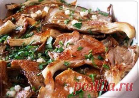 Вешенки в чесночном маринаде   Рецепты вкусно
