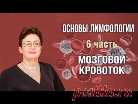 Основы лимфологии | Мозговой кровоток | Шишова Ольга | часть 6
