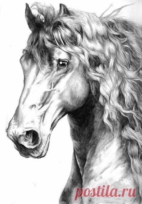 Схема вышивки «Белая лошадь.» - Вышивка крестом