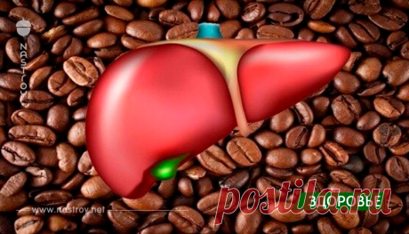 ¡Es aquí la vuelta! ¡Aquí que 2 tazas de café por día hacen con su hígado!